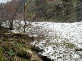 この雪渓で続歩断念。引き返す