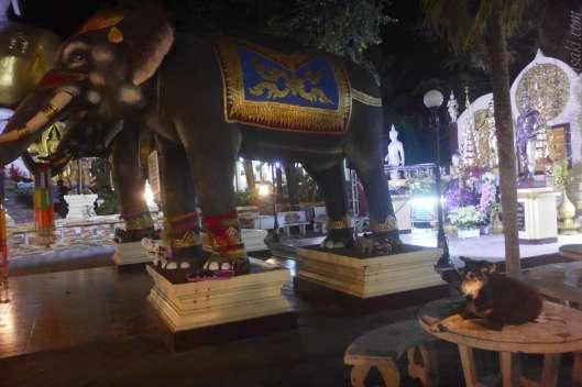 夜の Wat Phra That Doi Kham