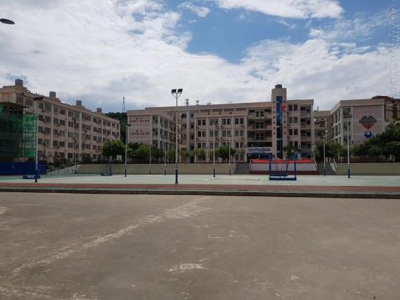 近くの学校