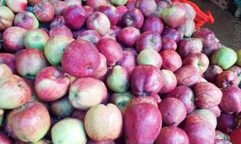 プンツォリング の生鮮市場