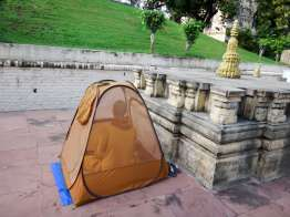 蚊帳テントの中でも