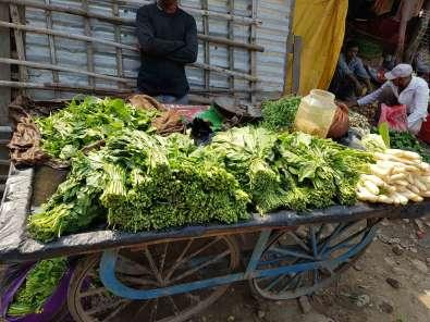 リシケシから バンバサ(ネパール西端國境)行き方