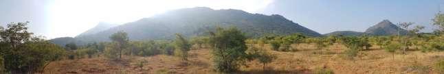 アルナチャラ山百景:ひとまわりするハイキング