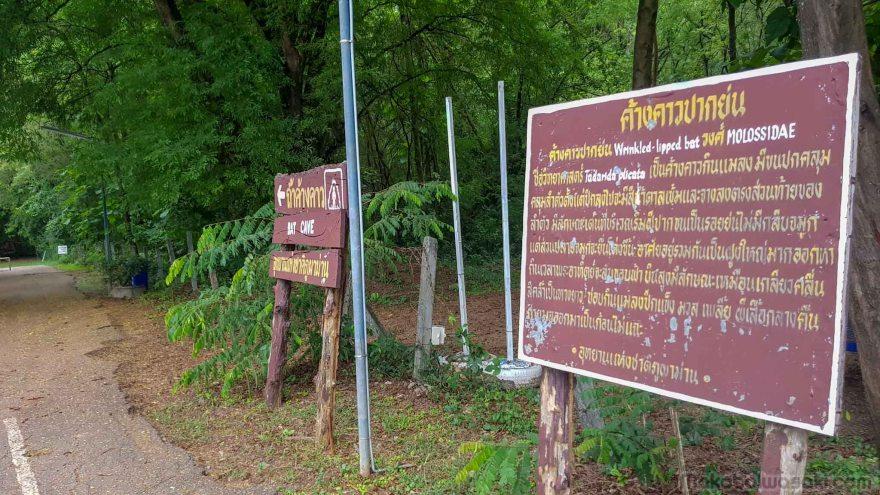 コウモリの群翔 Khang Khao Cave ถ้ำค้างคาว