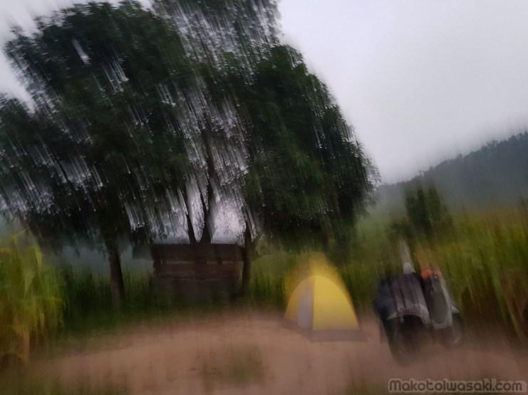上のとうもろこし畑でキャンプ