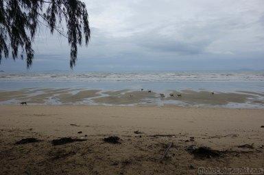 雨季のビーチはどんより