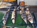 ラノーン温泉・ラクサワリン、鮮魚が安い