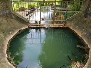 源泉は保護されている。直接汲めば飲めるだろう