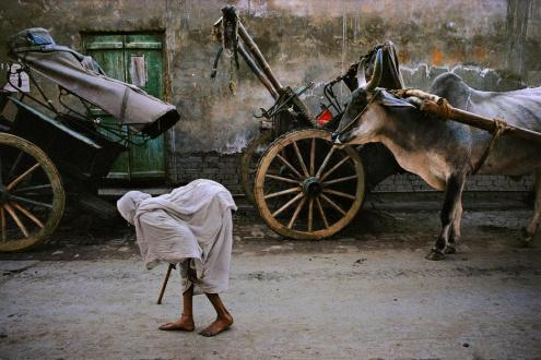 Steve McCurry,INDIA. Vrindavan. 1995. Widow.