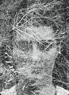 Henry M. Callahan
