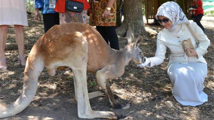 Avustralya Hakkında Şaşırtıcı Bilgiler!