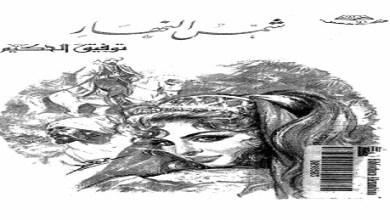 Photo of كتاب شمس النهار توفيق الحكيم PDF