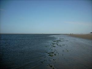 Eine Fantasiereise an die Nordseeküste.