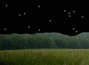 Eine Fantasiereise ins Land der Sterne.