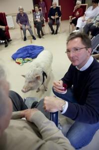 Therapie mit Schweinen