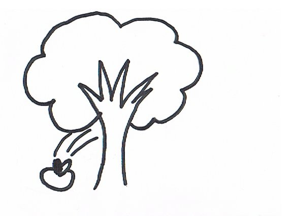 Der Apfel fällt nicht weit vom Stamm. Ein BIlderrätsel für das Gedächtnistraining mit Senioren