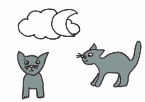 """Bilderrätsel zu dem Sprichwort """"Bei Nacht sind alle Katzen grau"""""""