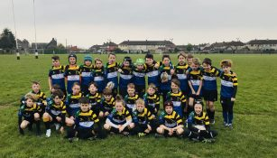 Youth and Mini Rugby