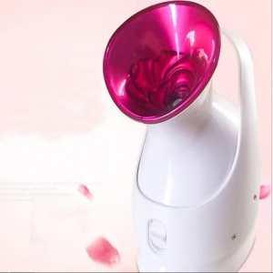 Nano-Ionic Face Steamer