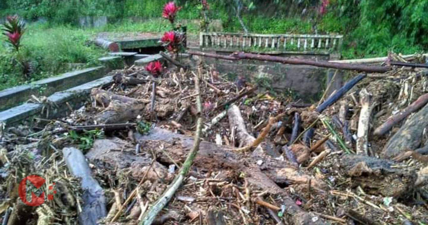 Foto : Banjir lumpur dan material kayu mati di Kecamatan Ngantang.