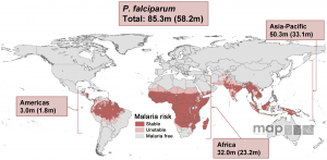 Malaria Pregnancy Risk