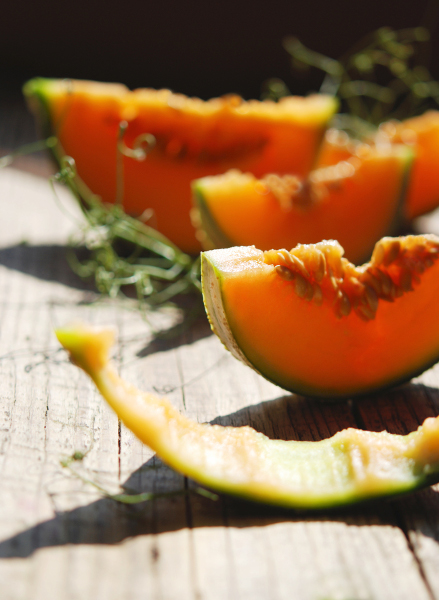 Melon cantaloupe 10