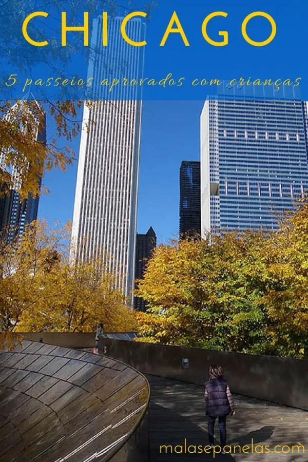 Chicago – 5 passeios aprovados com crianças | Malas e Panelas