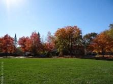 Ann Arbor - Michigan