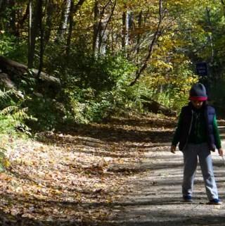 Ann Arbor – Nichols Arboretum