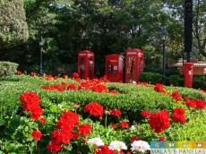 epcot flower and garden festival-4