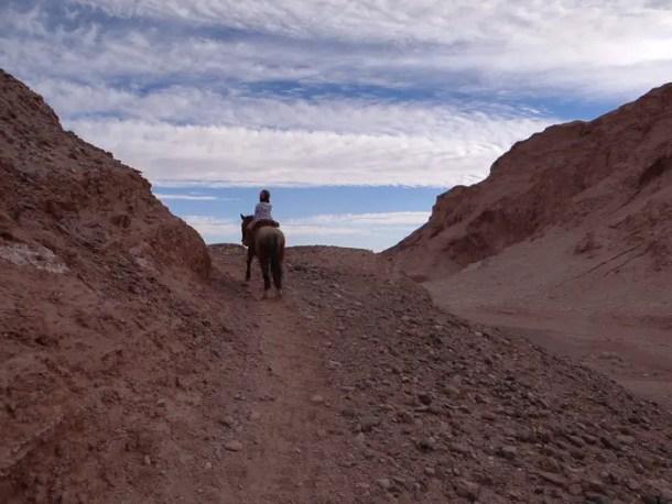 Cavalgada Atacama