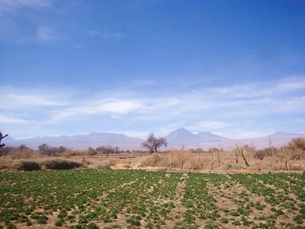 Vulcão Licancabur visto do hotel