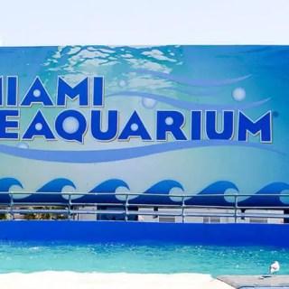 Nossa visita ao Miami Seaquarium