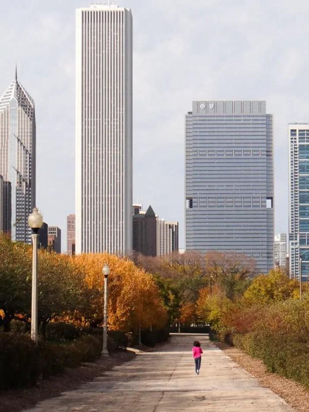 Chicago Grant Park (1)