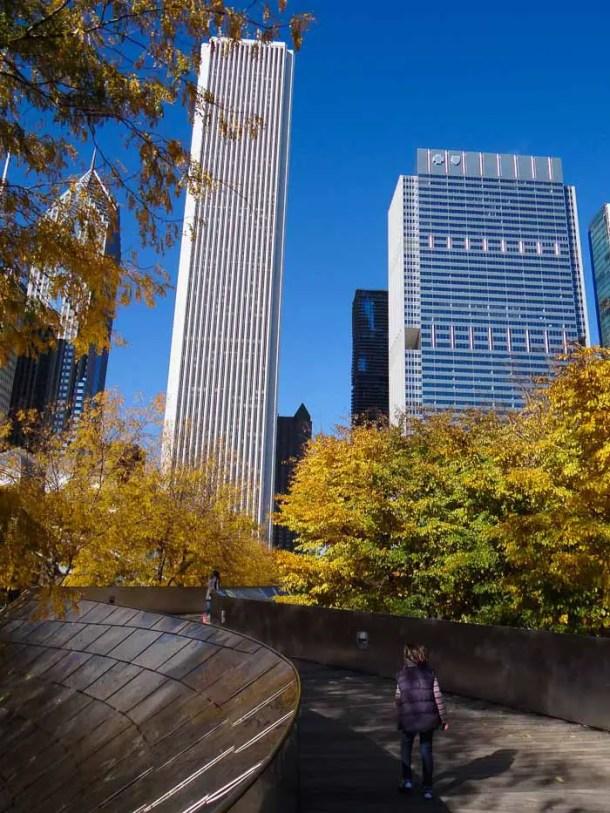 Chicago Millenium Park (1)