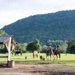Gramado rural – a vida no campo e a lida gaúcha no Sítio Tradição