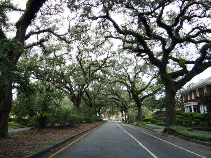 O que fazer em Savannah, Georgia
