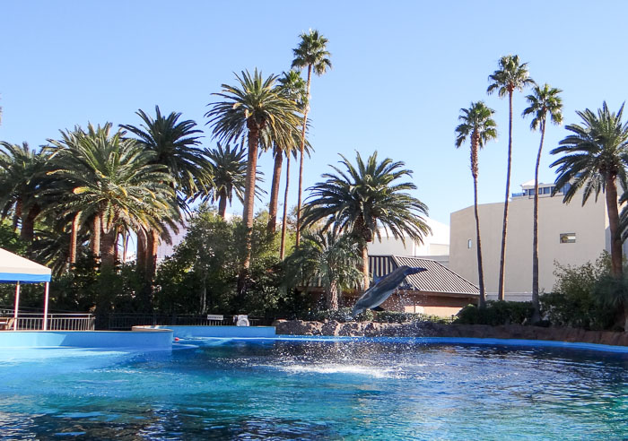 Siegfried and Roy's Secret Garden and Dolphin Habitat