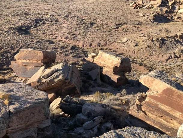 Newspaper Rock Petrified Forest National Park