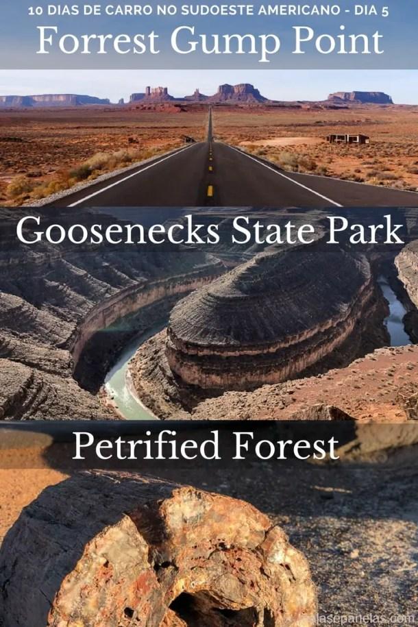 Roteiro de 10 dias no sudoeste americano Forrest Gump Point até Petrified Forest
