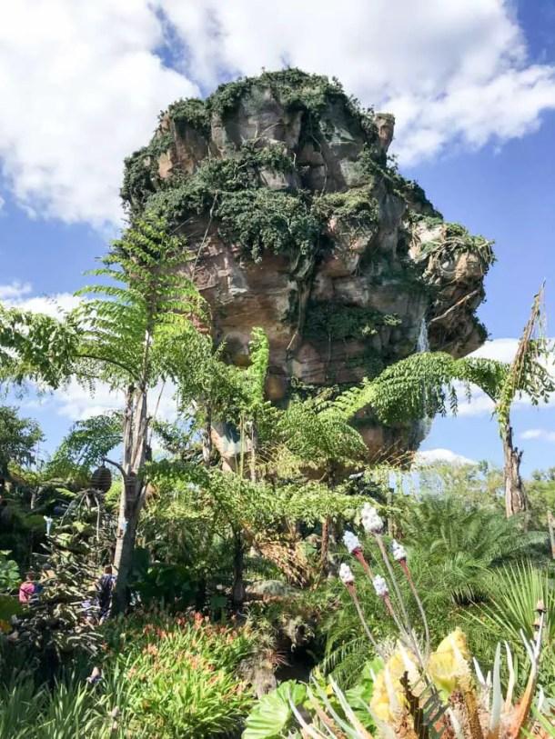 Disney's Animal Kingdom PandoraDisney's Animal Kingdom Pandora