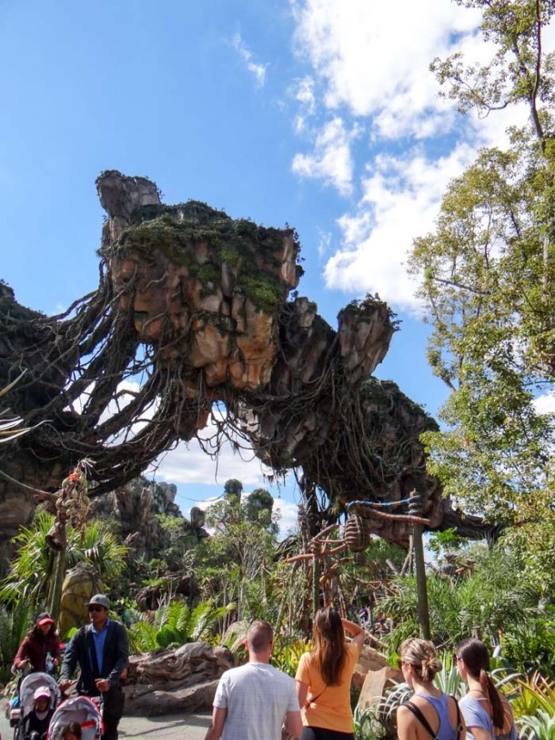 Disney's Animal Kingdom Pandora