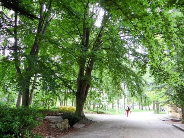 "16 Lugares para Visitar em Paris | Parc Floral de Paris | Malas e Panelas"" width="