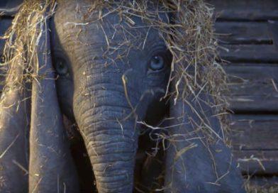 Dumbo: il trailer del nuovo film di Tim Burton