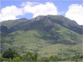 Zomba Malosa forest