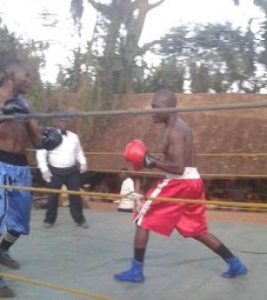 Boxing Malawi