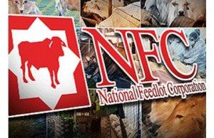 Kementerian Pertanian dan Industri Asas Tani mencadangkan projek NFC diteruskan atau dijenamakan semula.