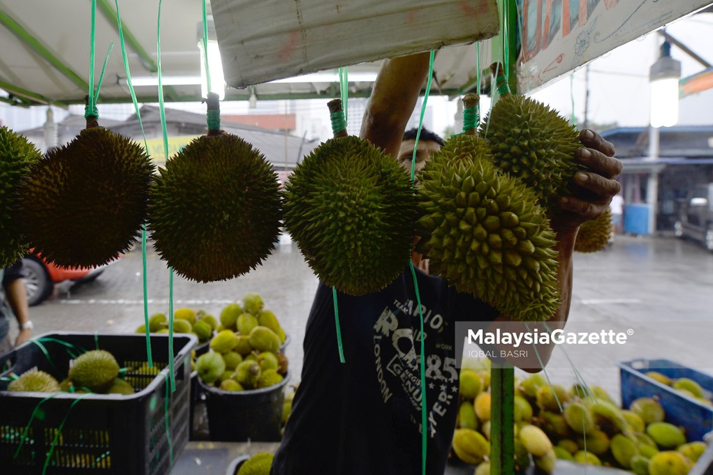 MGF14072019_Photo Essay Durian_02