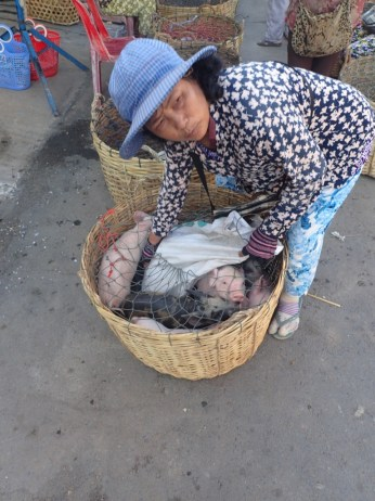 Vendor sells suckling pigs.