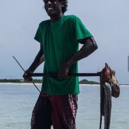 pesca al polpo